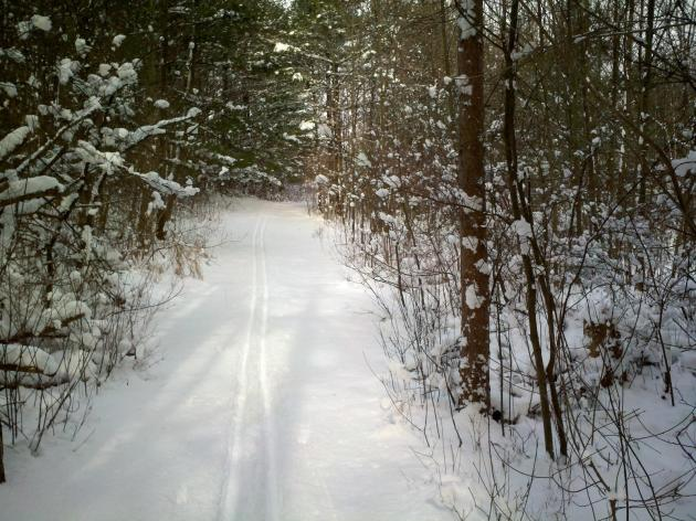 Cross-country skiing at Punderson State Park
