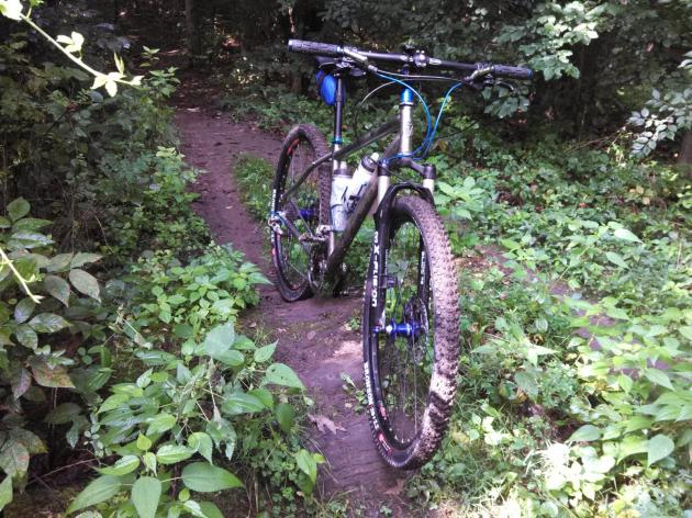 Salsa Fargo hardtail at Quail Hollow State Park